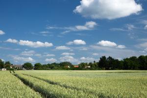 Brandenburg, verträumte Dörfer, Sommer