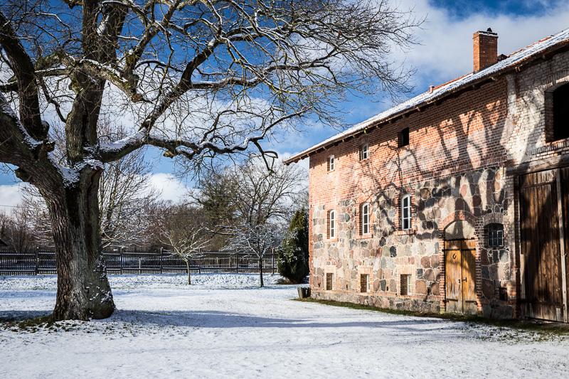 Winterstimmung, Feldsteinscheune, alter Baum